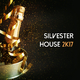 Various Artists - Silvester House 2k17