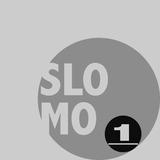 Slomo 1: Elektronische Entschleunigung by Various Artists mp3 download