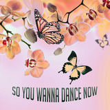 So You Wanna Dance Now by Various Artists mp3 download
