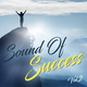 Various Artists - Sound of Success, Vol. 2