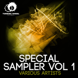 Special Sampler, Vol. 1 by Various Artists mp3 download