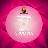 Spicy Grooves by Various Artists mp3 download
