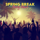 Various Artists - Spring Break Party Hard 2015