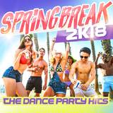 Springbreak 2k18: The Dance Party Hits by Various Artists mp3 download