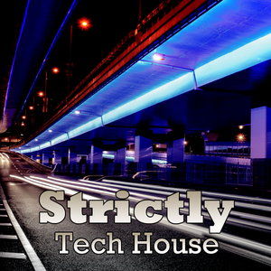 Various Artists - Strictly Tech House (House Place Records)