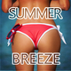 Various Artists - Summer Breeze