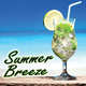 Various Artists Summer Breeze