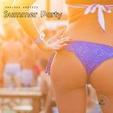 Summer Party by Various Artists mp3 download