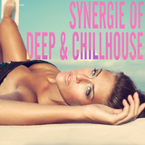 Synergie of Deep & Chillhouse by Various Artists mp3 download