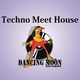Various Artists Techno Meet House