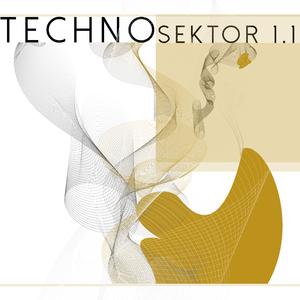 Various Artists - Techno Sektor 1.1 (Domestic Division)