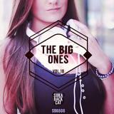 The Big Ones, Vol. 18 by Various Artists mp3 download