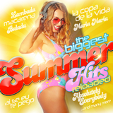 The Biggest Summer Hits Reloaded by Various Artists mp3 download