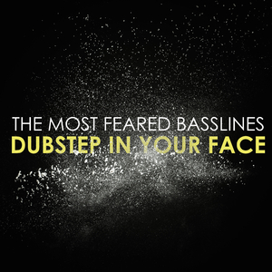 Various Artists - The Most Feared Basslines: Dubstep in Your Face (Breakdrum Recordsings)