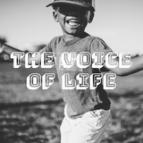 The Voice of Life by Various Artists mp3 download