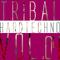 Tribal Hardtechno, Vol. 04 by Sane mp3 downloads