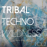 Tribal Techno Wildness, Vol. 2 by Various Artists mp3 download