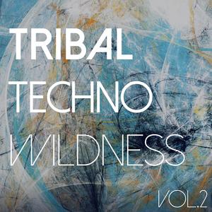Various Artists - Tribal Techno Wildness, Vol. 2 (Dance All Ways Digital)