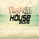 Various Artists - Tropical House 2015