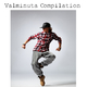 Various Artists Valminuta Compilation