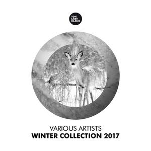 Various Artists - Winter Collection 2017 (Ton Liebt Klang)