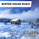 Various Artists - Winter House Music