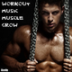 Various Artists - Workout Music Muscle Grow