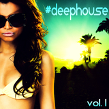 #Deephouse, Vol. 1 by Various Artists mp3 download