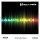Veselin Tasev Amplitude(Extended Mix)