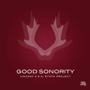 Vincent a.k.a. Synth Project - Good Sonority (Staeg Records)