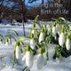 Vladimir Sterzer - Spring Is the Birth of Life(Symphonic Version)