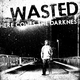 Wasted Here Comes the Darkness