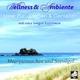 Wellness & Ambiente Meer pur: Erleben und genießen - Meeresrauschen und Seevögel (Lange Version)
