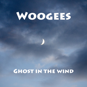 Woogees - Ghost in the Wind (Woogees Records)