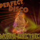 World Electric Perfect Disco