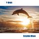 Y-Orbit Dolphin Wave