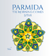 Yuho Parmida: The Morning Comes - Sitar