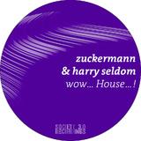 Wow. House.! by Zuckermann & Harry Seldom mp3 download