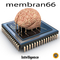 Intelligence by membran 66 mp3 downloads