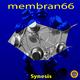 membran 66 - Synesis