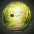 Nathaniel DJ - Beautiful Forest