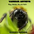 Various Artists - Deep Melodic Sounds, Vol.