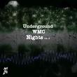 Various Artists - Underground WMC Nights, V