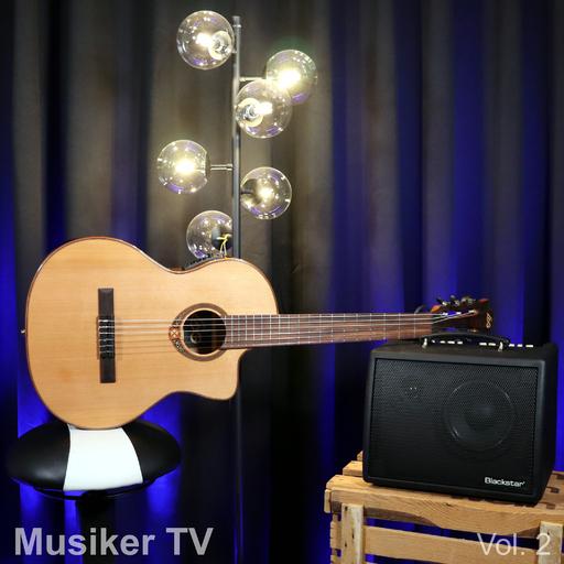 Mario Seifarth - Musiker TV, Vol. 2
