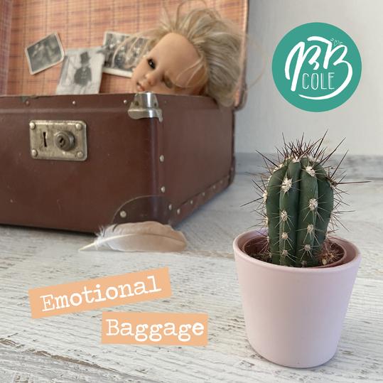 B.B. Cole - Emotional Baggage