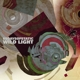 65daysofstatic Wild Light (Ltd.Edt.)