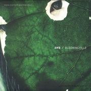 awb-bloomingville-peter-van-hoesen-remix