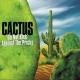 Cactus Do Not Kick Against The Pricks!
