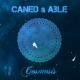 Caned & Able Cosmosis
