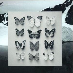 Christian Löffler - Young Alaska (LP+7'') (Ki Records)